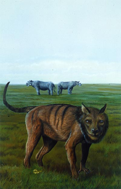 Andrewsarchus by April Lawton