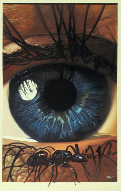 Eye And Ant by April Lawton