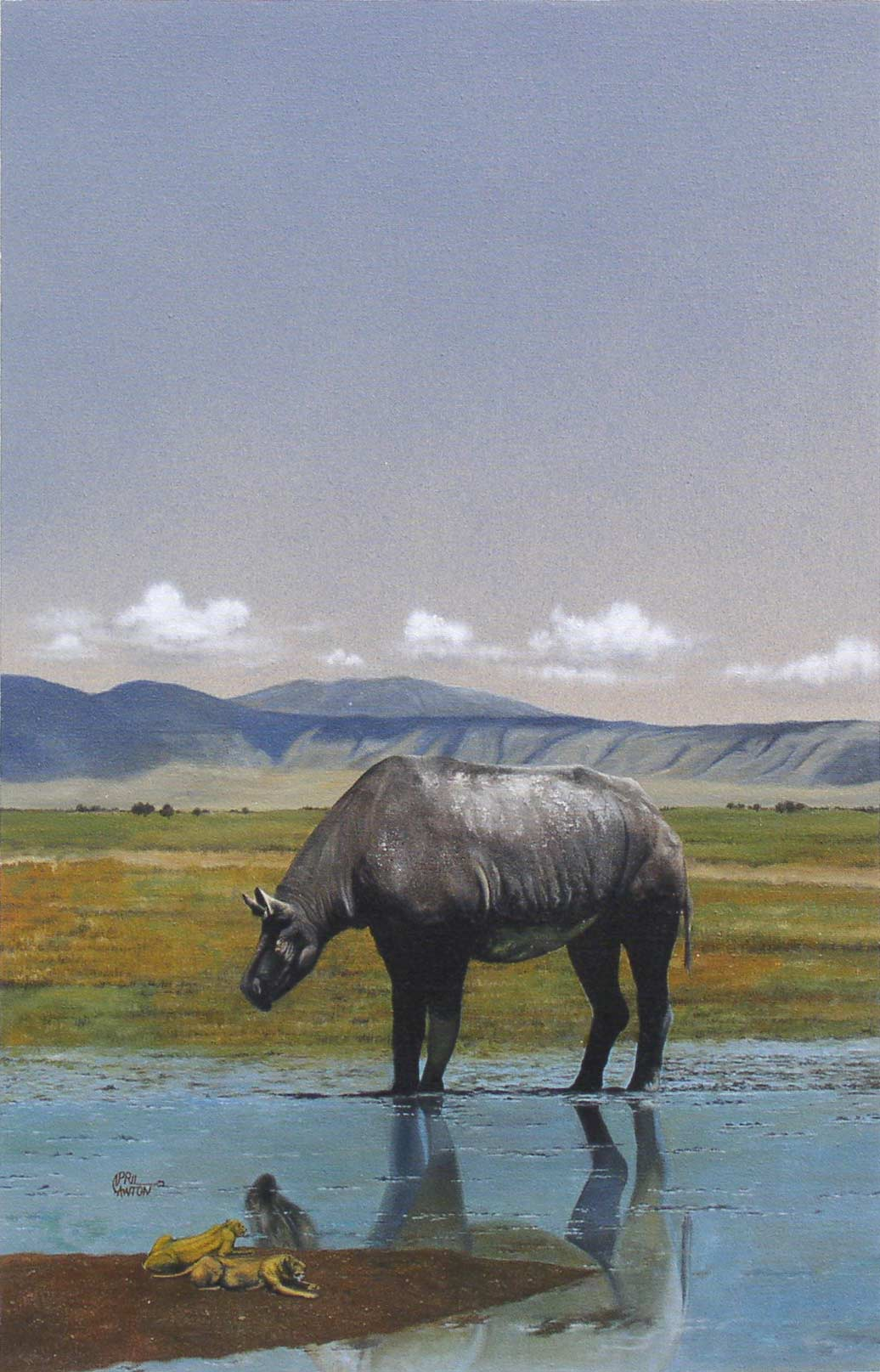 Baluchitherium (early rhinocerous) by April Lawton